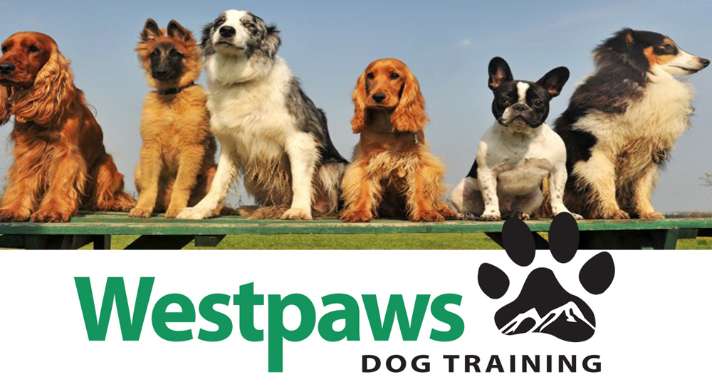 Westpaws-dog-training